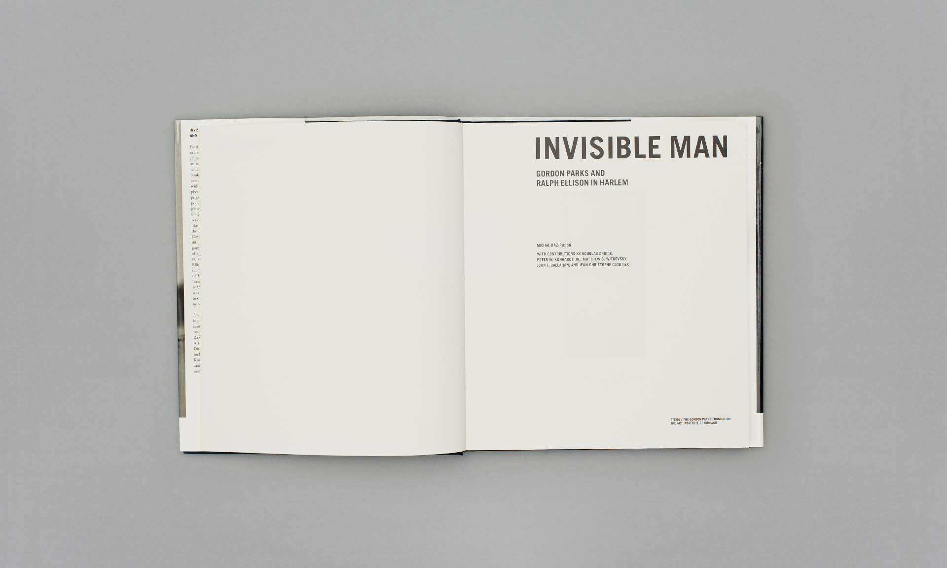 Parks_Invisible_Man_03